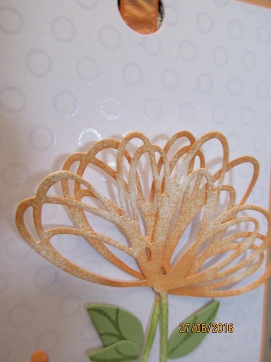 die eingefärbte Blüte und das besondere DSP